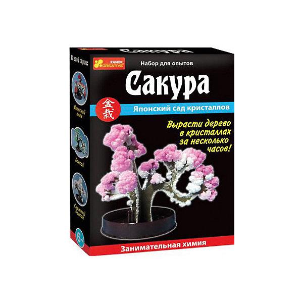 Набор для опытов СакураВыращивание кристаллов<br>Характеристики товара:<br><br>• возраст: от 8 лет;<br>• цвет: розовый;<br>• материал: пластик, картон;<br>• размер упаковки: 14х10х3 см.;<br>• упаковка: картонная коробка;<br>• вес в упаковке: 40 гр.;<br>• бренд, страна: Ranok Creative, Украина.<br><br>Набор для опытов «Сакура» от бренда Ranok Creative - поможет ребенку совершенно самостоятельно вырастить сакуру – японскую вишню.<br><br>Это будет не простое деревце: на его ветвях расцветут нежно-розовые кристаллы! На коробке написана подробная инструкция по выращиванию этого оригинального дерева. Если ребенок в точности выполнит указания, то сакура лишь за пару часов распустит красивые листья и цветы из розовых и белых кристаллов.<br><br>Данный набор содержит подставку, держатель, жидкость для выращивания кристаллов и картонное деревце. Он станет отличным подарком для юных любителей химии и различных экспериментов.<br><br>Рекомендуемый возраст: от 8 лет, под наблюдением взрослых.<br><br>Набор для опытов «Сакура», Ranok Creative можно купить в нашем интернет-магазине.<br><br>Ширина мм: 100<br>Глубина мм: 30<br>Высота мм: 140<br>Вес г: 40<br>Возраст от месяцев: 96<br>Возраст до месяцев: 192<br>Пол: Унисекс<br>Возраст: Детский<br>SKU: 7252965