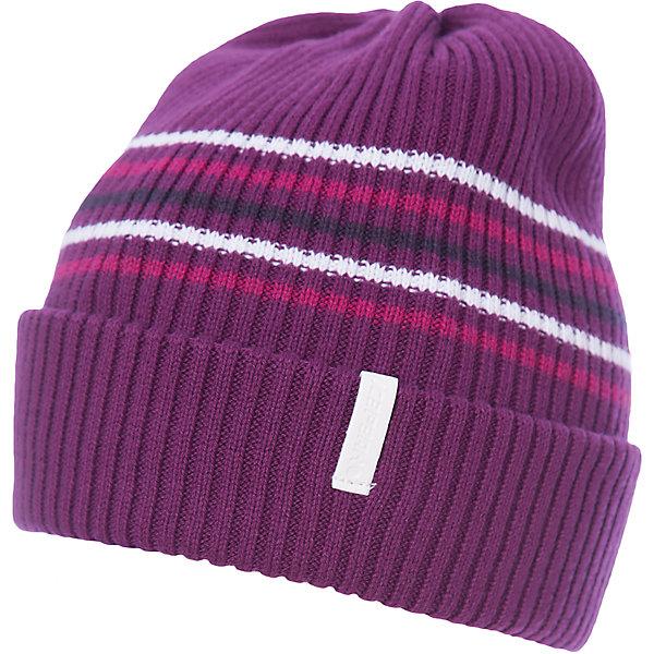 Шапка ICEPEAK для мальчикаГоловные уборы<br>Характеристики товара:  <br><br>• цвет: фиолетовый;<br>• состав: 100% хлопок;<br>• сезон: демисезон;<br>• страна бренда: Финляндия;<br>• страна изготовитель: Китай. <br><br>Эта шапка для мальчика легко надевается благодаря мягкой резинке. Детская шапка стильно смотрится. Легкая шапка для ребенка отличается оригинальным дизайном.   <br><br>Шапку Icepeak (Айспик) для мальчика можно купить в нашем интернет-магазине.<br>Ширина мм: 88; Глубина мм: 155; Высота мм: 26; Вес г: 106; Цвет: лиловый; Возраст от месяцев: 72; Возраст до месяцев: 120; Пол: Мужской; Возраст: Детский; Размер: 54-56; SKU: 7264490;