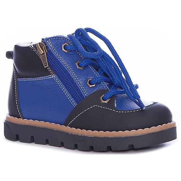 Ботинки TapibooБотинки<br>Характеристики товара:<br><br>• цвет: синий<br>• внешний материал: натуральная кожа <br>• внутренний материал: байка<br>• стелька: байка<br>• подошва: полимер<br>• сезон: демисезон<br>• температурный режим: от -5 до +5<br>• застежка: молния, шнурки<br>• защита мыса<br>• подошва не скользит<br>• жесткий задник<br>• анатомические <br>• страна бренда: Россия<br>• страна изготовитель: Россия<br><br>Демисезонные ботинки для девочки призваны защитить ноги их от ветра, холода и влаги. Утепленные детские ботинки имеют не только стильный проработанный дизайн, но и отлично подходят для мокрой и холодной погоды межсезонья. Теплая детская обувь от бренда Tapiboo - это высокое качество по доступной цене.<br><br>Ботинки Tapiboo (Тапибу) можно купить в нашем интернет-магазине.<br><br>Ширина мм: 262<br>Глубина мм: 176<br>Высота мм: 97<br>Вес г: 427<br>Цвет: синий<br>Возраст от месяцев: 72<br>Возраст до месяцев: 84<br>Пол: Унисекс<br>Возраст: Детский<br>Размер: 30,29,28,27,26,35,34,33,32,31<br>SKU: 7265429