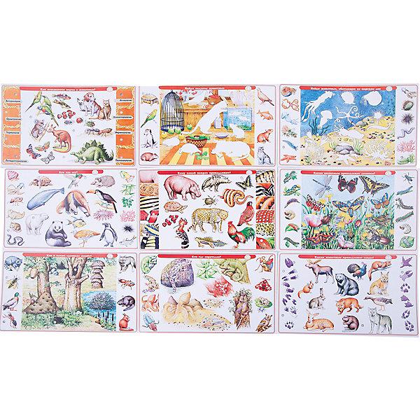 Набор карточек. Детям о животныхОбучающие карточки<br>Характеристики:<br><br>• тип игрушки: настольная игра;<br>• комплектация: 10 двусторонних карточек, брошюра с правилами и ответами;                                                                <br>• возраст: от 5 лет;<br>• размер: 28x17х3 см;<br>• издатель: Дрофа;<br>• упаковка: картонная коробка;<br>• материал: картон.<br><br>Игра «Набор карточек. Детям о животных» разработана для детей от 5 лет. Важная особенность игры – карточки в наборе не являются самостоятельной игрой, а служат дополнением к электровикторине в коробке. К любой нашей электровикторине подходят наборы карточек от других игр этой серии. Поэтому можно купить  1 электровикторину и разные наборы карточек к ней.<br><br>Игра знакомит с многообразием животного мира нашей планеты: наиболее интересными и удивительными существами, населяющими Землю, местами их обитания, образом жизни, способами добычи пищи и спасения от врагов, особенностями общения и поведения. Играя, дети учатся сопоставлять, сравнивать, устанавливать закономерности, принимать решения и проверять себя.<br><br>Игра расширяет кругозор, способствует развитию произвольного внимания, логического мышления, памяти, пополняет словарь.<br><br>В наборе представлены такие темы:<br>Чудеса маскировки<br>Соотнеси животных и части их тела<br>У каждого своё меню<br>У кого больше детенышей?<br>Где чья шубка?<br>Угадай животного по тени<br>Морские обитатели<br>Детёныш ищет маму<br>Кто где живёт?<br>Звери играют в прятки<br>Названия сообществ животных<br>Животные разные, а названия одинаковые<br>Определи животное по следу<br>Какая из гусеницы получится бабочка?<br>Кто с кем дружит?<br>Науки о животных<br><br><br>Игру «Набор карточек. Детям о животных» можно купить в нашем интернет-магазине.<br>Ширина мм: 280; Глубина мм: 170; Высота мм: 3; Вес г: 120; Возраст от месяцев: 60; Возраст до месяцев: 2147483647; Пол: Унисекс; Возраст: Детский; SKU: 7323637;