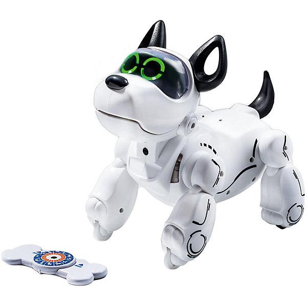 Интерактивная собака-робот Silverlit PupboРоботы<br>Характеристики:<br><br>• возраст: от 5 лет;<br>• тип игрушки: собака-робот;<br>• размер: 35х28х51 см;<br>• вес: 850 гр;<br>• цвет: белый;<br>• материал: пластик;<br>• тип батарейки: 4 типа  AA;<br>• комплектация: не входят в комплект;<br>• бренд: Silverlit.<br><br>Собака робот PupBo – отличный подарок для детей от 5 лет. Ребенок сможет узнать, как дрессировать собаку, будет играть с ним, как с настоящим четвероногим другом, а также узнает о том, что такое ответственность и забота. Игрушка  представляет собой робота, выполненного в виде щенка. <br><br>обот выражает свыше 5 эмоций, которые вы сможете безошибочно определить, а также может выучить 12 команд. Дрессировка осуществляется при помощи специальной косточки-пульта.  Узнать то, в каком настроении собака, вы сможете по сенсорам, расположенным на голове игрушки. Чтобы порадовать щенка, достаточно его погладить, а чтобы наказать – нажать на его нос. <br><br>Робот весьма реалистично движется, напоминая настоящую собачку. Он может принимать свыше 10 реалистичных поз. Это возможно благодаря наличию различных датчиков.  В процессе игры с данным роботом ребенок поучится ответственности, станет более внимательным и весело проведет свое свободное время.<br><br>Собаку-робота PupBo можно купить в нашем интернет-магазине.<br>Ширина мм: 35; Глубина мм: 28; Высота мм: 51; Вес г: 950; Возраст от месяцев: 60; Возраст до месяцев: 2147483647; Пол: Унисекс; Возраст: Детский; SKU: 7342312;
