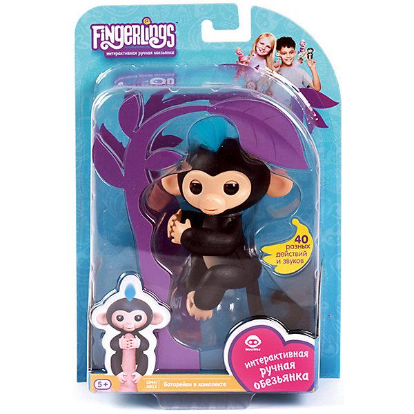 Интерактивная обезьянка Fingerlings Финн, 12 см (черная) WowWeeИнтерактивные животные<br>Характеристики:<br><br>• возраст: от 5 лет;<br>• тип игрушки: обезьянка;<br>• размер: 15х22,5х6 см;<br>• высота: 12 см;<br>• цвет: черный;<br>• материал: пластмасса, резина;<br>• тип батарейки: 4 батарейки LR44;<br>• комплектация: входят в комплект;<br>• страна изготовления: Китай;<br>• бренд: WowWee.<br><br>FINGERLINGS «Интерактивная  обезьянка  Финн» (черная), 12 см – «живая» веселая обезьянка, которая умеет цепляться за палец или закрепляться на любой поверхности с помощью хвостика. Эти малыши, выполненные на базе последних разработок в мире игрушечной робототехники, обязательно удивят и очаруют ребенка. Игрушка подходит для детей от 5 лет. Для работы потребуются 4 батарейки  LR44 (входят в комплект).<br><br>Обезьянки умеют реагировать на движение и голос, в ответ на прикосновение выполнять более 40 различных действий, издавать более 50 звуковых сигналов, цепляться лапками за палец или любые другие мелкие предметы, висеть головой вниз, закрепляясь хвостиком за любую поверхность, общаться с другими обезьянками «Fingerlings», посылать воздушные поцелуи, если подуть в мордочку. <br><br>FINGERLINGS «Интерактивную  обезьянку  Финн»  (черная), 12 см можно купить в нашем интернет-магазине.<br>Ширина мм: 15; Глубина мм: 22; Высота мм: 6; Вес г: 180; Цвет: черный; Возраст от месяцев: 60; Возраст до месяцев: 2147483647; Пол: Унисекс; Возраст: Детский; SKU: 7342558;