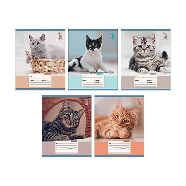 Чудесные коты 12л., 5 видовБумажная продукция<br>Характеристики:<br><br>• возраст: от 7 лет<br>• в наборе: 1 тетрадь<br>• формат: А5<br>• количество листов: 12<br>• обложка: мелованный картон, выборочный лак<br>• внутренний блок: офсет, плотностью 60 г/м2, линейка, с полями<br>• крепление: скрепка<br>• дизайн обложки в ассортименте (5 видов)<br>• ВНИМАНИЕ! Данный артикул представлен в разных вариантах исполнения. К сожалению, заранее выбрать определенный вариант невозможно. При заказе нескольких тетрадей возможно получение одинаковых<br><br>Тетрадь в линейку с полями «Чудесные коты» предназначена для школьников. Отличная полиграфия и качественная бумага обеспечат высокое качество письма. Обложка из мелованного картона позволит сохранять тетрадь в аккуратном виде в течение всего периода использования.<br><br>Тетрадь «Чудесные коты» 12л., 5 видов можно купить в нашем интернет-магазине.<br>Ширина мм: 200; Глубина мм: 2; Высота мм: 163; Вес г: 39; Возраст от месяцев: 84; Возраст до месяцев: 2147483647; Пол: Унисекс; Возраст: Детский; SKU: 7373857;