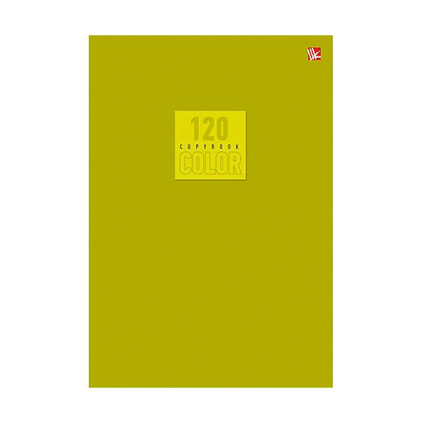 Стиль и цвет. Оливковый 120л.Бумажная продукция<br>Характеристики:<br><br>• возраст: от 7 лет<br>• формат: А5 (20,2х14,2х1 см.)<br>• количество листов: 120<br>• обложка: импортный мелованный картон повышенного качества<br>• внутренний блок: офсет, плотностью 60 г/м2, клетка<br>• крепление: швейное клеевое крепление<br><br>Тетрадь в клетку «Стиль и цвет. Оливковый» предназначена для школьников старших классов. Отличная полиграфия и качественная бумага обеспечат высокое качество письма. Обложка из импортного мелованного картона повышенного качества позволит сохранять тетрадь в аккуратном виде в течение всего периода использования.<br><br>Тетрадь «Стиль и цвет. Оливковый» 120л. можно купить в нашем интернет-магазине.<br>Ширина мм: 220; Глубина мм: 10; Высота мм: 140; Вес г: 209; Возраст от месяцев: 84; Возраст до месяцев: 2147483647; Пол: Унисекс; Возраст: Детский; SKU: 7373874;