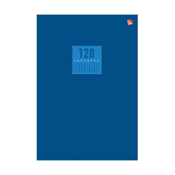 Стиль и цвет. Синий 120л.Бумажная продукция<br>Характеристики:<br><br>• возраст: от 7 лет<br>• формат: А5 (20,2х14,2х1 см.)<br>• количество листов: 120<br>• обложка: импортный мелованный картон повышенного качества<br>• внутренний блок: офсет, плотностью 60 г/м2, клетка<br>• крепление: швейное клеевое крепление<br><br>Тетрадь в клетку «Стиль и цвет. Синий» предназначена для школьников старших классов. Отличная полиграфия и качественная бумага обеспечат высокое качество письма. Обложка из импортного мелованного картона повышенного качества позволит сохранять тетрадь в аккуратном виде в течение всего периода использования.<br><br>Тетрадь «Стиль и цвет. Синий» 120л. можно купить в нашем интернет-магазине.<br>Ширина мм: 220; Глубина мм: 10; Высота мм: 140; Вес г: 209; Возраст от месяцев: 84; Возраст до месяцев: 2147483647; Пол: Унисекс; Возраст: Детский; SKU: 7373875;