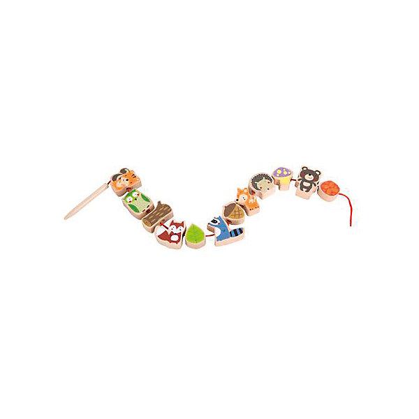 Игра-шнуровка Classic World Лесные друзьяРазвивающие игрушки<br>Характеристики товара:<br><br>• возраст: от 1 года;<br>• материал: дерево, текстиль;<br>• размер упаковки: 47х3х2 см;<br>• вес: 240 гр;<br>•страна производитель: Китай;<br>• бренд: Classic World.<br><br>Оригинальная игра-шнуровка «Лесные друзья» с крупными фигурками из дерева помогает развивать мелкую моторику малышей. Эта игра поможет ребенку наглядно ознакомиться с лесными жителями.<br><br>Каждая фигурка представляет собой зверька, размеров 4 на 2 сантиметра. В набор входят такие животные, как белочка, сова, лисичка, енот, оленёнок, ёжик и медведь, а также предметы, которые также можно увидеть в лесу: жёлудь, грибочек и другие.<br><br>Нанизывая фигурки на шнурок длинной в 45 см, малыш будет развивать свою усидчивость и глазомер. Также игра способствует развитию гибкости кистей и с самого детства знакомит ребенка с названиями животных.<br><br>Яркие цвета фигурок обязательно привлекут внимание ребенка. Игрушка изготовлена из экологически чистого дерева и окрашена вручную безопасными детскими красками.<br><br>Развивающую игру-шнуровку «Лесные друзья» можно купить в нашем интернет-магазине.<br><br>Ширина мм: 80<br>Глубина мм: 420<br>Высота мм: 250<br>Вес г: 170<br>Возраст от месяцев: 12<br>Возраст до месяцев: 2147483647<br>Пол: Унисекс<br>Возраст: Детский<br>SKU: 7376730