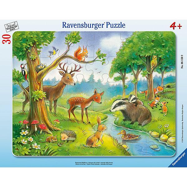 Пазл Лесные животные 30 штПазлы до 64 деталей<br>Характеристики:<br><br>• тип игрушки: пазл;<br>• комплектация: 30 эл.;<br>• бренд: Ravensburger;<br>• упаковка: картон;<br>• размер: 38х5х30 см;<br>• вес: 323 гр;<br>• возраст: от 3 лет;<br>• материал: картон.<br><br>Пазл «Лесные животные» 30 шт представляет из себя увлекательную игру для детей от трех лет. Набор состоит из 30 деталей, выполненных из высококачественного картона. <br>Это простой пазл, который рассчитан на младших детишек. На красивой, мирной и детализированной иллюстрации изображен ручей на опушке, вокруг которого собрались лесные животные. А благодаря качеству пазла, его можно собирать и разбирать многократно. Сборка данного пазла сможет увлечь детей и поспособствовать развитию логического мышления и усидчивости. Собранный пазл можно повесить в рамке как  украшение.<br><br>Собирание картинок-пазлов очень полезно для детей. Пазл надолго увлечет малыша.  Они развивают образное и логическое мышление, наблюдательность и внимательность, а также мелкую моторику и координацию движений рук.<br><br>Пазл «Лесные животные» 30 шт  можно купить в нашем интернет-магазине.<br><br>Ширина мм: 380<br>Глубина мм: 5<br>Высота мм: 300<br>Вес г: 323<br>Возраст от месяцев: -2147483648<br>Возраст до месяцев: 2147483647<br>Пол: Унисекс<br>Возраст: Детский<br>SKU: 7376806