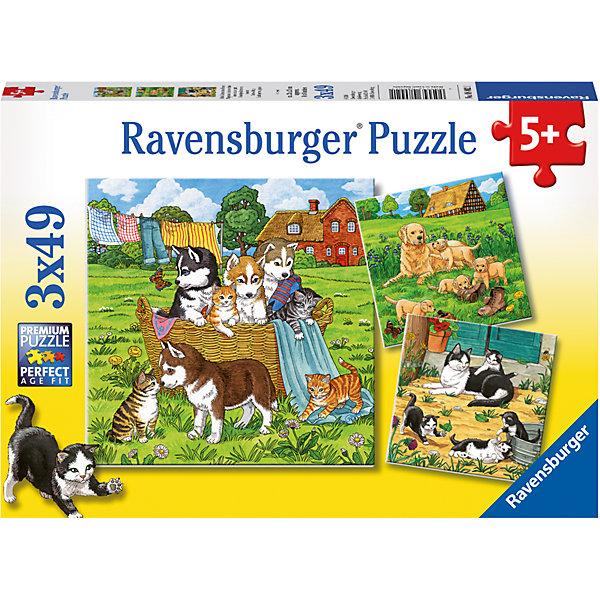 Пазл «Котята и щенки» 3х49штПазлы для малышей<br>Характеристики:<br><br>• тип игрушки: пазл;<br>• комплектация: 147 эл.;<br>• бренд: Ravensburger;<br>• упаковка: картон;<br>• размер: 23х5х19 см;<br>• вес: 293 гр;<br>• возраст: от 3 лет;<br>• материал: картон.<br><br>Пазл «Котята и щенки» 3х49шт представляет из себя увлекательную игру для детей от трех лет. Набор состоит из 147 деталей, выполненных из высококачественного картона.  <br>Этот набор состоит из трех красочных пазлов, каждый из которых состоит из сорока девяти элементов. Из комплекта пазлов можно собрать три яркие картинки с изображением  собачек и котят.<br><br>Сборка данного пазла сможет увлечь детей и поспособствовать развитию логического мышления и усидчивости. Собранный пазл можно повесить в рамке как  украшение. Собирание картинок-пазлов очень полезно для детей. Они развивают образное и логическое мышление, наблюдательность и внимательность, а также мелкую моторику и координацию движений рук.<br><br>Пазл «Котята и щенки» 3х49шт можно купить в нашем интернет-магазине.<br><br>Ширина мм: 230<br>Глубина мм: 40<br>Высота мм: 190<br>Вес г: 293<br>Возраст от месяцев: -2147483648<br>Возраст до месяцев: 2147483647<br>Пол: Унисекс<br>Возраст: Детский<br>SKU: 7376825