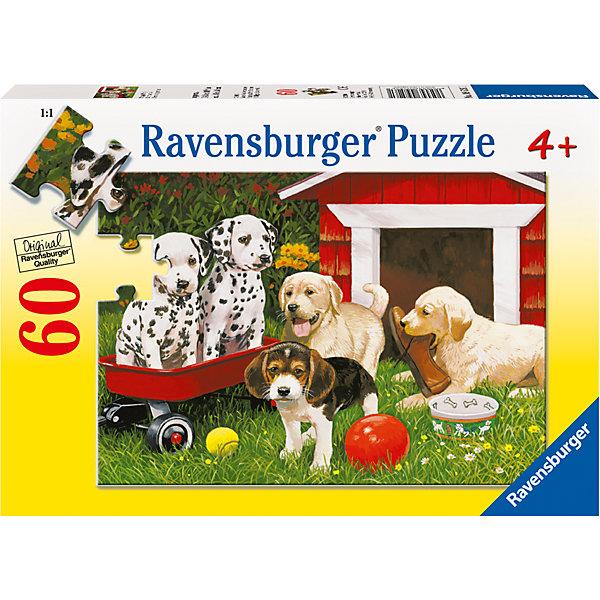 Пазл «Собаки в саду» 60 штПазлы для малышей<br>Характеристики:<br><br>• тип игрушки: пазл;<br>• комплектация: 60 эл.;<br>• бренд: Ravensburger;<br>• упаковка: картон;<br>• размер: 28х4х19 см;<br>• вес: 311 гр;<br>• возраст: от 4 лет;<br>• материал: картон.<br><br>Пазл «Собаки в саду» 60 шт представляет из себя увлекательную игру для детей от четырех лет. Набор состоит из 60 деталей, выполненных из высококачественного картона. Из  красочных элементов получится чудесная картина с изображением озорных щенков, занятых играми. Сбор пазлов может разнообразить досуг детей и помочь ребенку в общем интеллектуальном развитии.<br><br>Пазл сделан из плотного картона, с нанесением яркого красочного рисунка и аккуратной вырубкой деталей с четкими гладкими краями, которые позволяют легко состыковывать элементы пазла между собой. Сборка данного пазла сможет увлечь детей и поспособствовать развитию логического мышления и усидчивости.  Они также развивают образное мышление, наблюдательность и внимательность, а также мелкую моторику и координацию движений рук.<br><br>Пазл «Собаки в саду» 60 штможно купить в нашем интернет-магазине.<br><br>Ширина мм: 280<br>Глубина мм: 40<br>Высота мм: 190<br>Вес г: 311<br>Возраст от месяцев: -2147483648<br>Возраст до месяцев: 2147483647<br>Пол: Унисекс<br>Возраст: Детский<br>SKU: 7376851