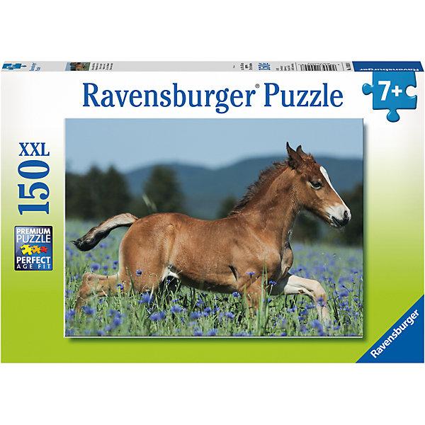 Пазл «Молодая лошадь» XXL 150 штПазлы классические<br>Характеристики:<br><br>• тип игрушки: пазл;<br>• комплектация: 150 эл.;<br>• бренд: Ravensburger;<br>• упаковка: картон;<br>• размер: 34х4х23 см;<br>• вес: 533 гр;<br>• возраст: от 7 лет;<br>• материал: картон.<br><br>Пазл «Молодая лошадь» XXL 150 шт представляет из себя увлекательную игру для детей от семи лет. Набор состоит из 150 деталей, выполненных из высококачественного картона. Из них предлагается собрать изображение маленького жеребенка, который скачет по полю.<br><br>Пазл сделан из плотного картона, с нанесением яркого красочного рисунка и аккуратной вырубкой деталей с четкими гладкими краями, которые позволяют легко состыковывать элементы пазла между собой. Сборка данного пазла сможет увлечь детей и поспособствовать развитию логического мышления и усидчивости.  Они также развивают образное мышление, наблюдательность и внимательность, а также мелкую моторику и координацию движений рук.<br><br>Пазл «Молодая лошадь» XXL 150 шт можно купить в нашем интернет-магазине.<br>Ширина мм: 340; Глубина мм: 40; Высота мм: 230; Вес г: 533; Возраст от месяцев: -2147483648; Возраст до месяцев: 2147483647; Пол: Унисекс; Возраст: Детский; SKU: 7376863;