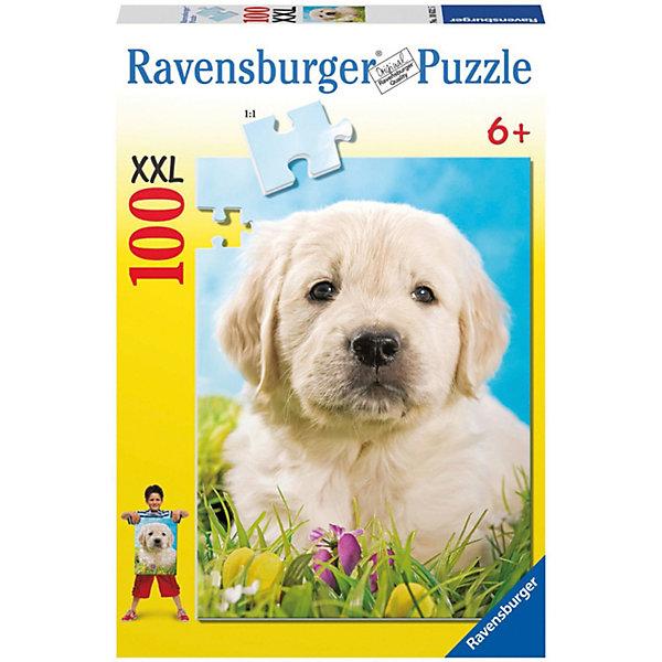 Пазл «Милый щенок» XXL 100 штПазлы до 100 деталей<br>Характеристики:<br><br>• тип игрушки: пазл;<br>• комплектация: 100 эл.;<br>• бренд: Ravensburger;<br>• упаковка: картон;<br>• размер: 34х4х23 см;<br>• вес: 567 гр;<br>• возраст: от 6 лет;<br>• материал: картон.<br><br>Пазл «Милый щенок» XXL 100 шт представляет из себя увлекательную игру для детей от шести лет. Набор состоит из 100 деталей, выполненных из высококачественного картона. Из них предлагается собрать изображение милого щенка.  Головоломки Ravensburger всегда отличаются высоким качеством полиграфии, изготовлены из экологичного сырья.   Рисунок имеет матовую поверхность без бликов, напечатан на ламинированной бумаге. <br><br>Пазл сделан из плотного картона, с нанесением яркого красочного рисунка и аккуратной вырубкой деталей с четкими гладкими краями, которые позволяют легко состыковывать элементы пазла между собой. Сборка данного пазла сможет увлечь детей и поспособствовать развитию логического мышления и усидчивости.  Они также развивают образное мышление, наблюдательность и внимательность, а также мелкую моторику и координацию движений рук.<br><br>Пазл «Милый щенок» XXL 100 шт можно купить в нашем интернет-магазине.<br><br>Ширина мм: 230<br>Глубина мм: 40<br>Высота мм: 340<br>Вес г: 567<br>Возраст от месяцев: -2147483648<br>Возраст до месяцев: 2147483647<br>Пол: Унисекс<br>Возраст: Детский<br>SKU: 7376875