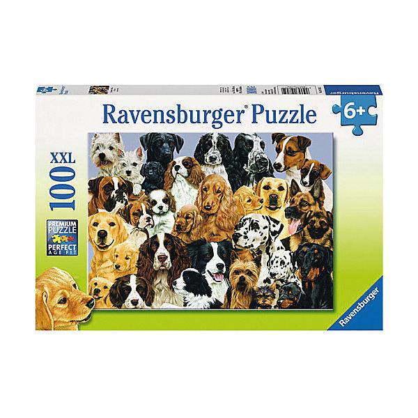 Пазл «Парад собак» XXL 100 штСимвол года<br>Характеристики:<br><br>• тип игрушки: пазл;<br>• комплектация: 100 эл.;<br>• бренд: Ravensburger;<br>• упаковка: картон;<br>• размер: 34х4х23 см;<br>• вес: 567 гр;<br>• возраст: от 6 лет;<br>• материал: картон.<br><br>Пазл «Парад собак» XXL 100 шт представляет из себя увлекательную игру для детей от шести лет. Набор состоит из 100 деталей, выполненных из высококачественного картона. Из них предлагается собрать изображение собак разных пород. Головоломки Ravensburger всегда отличаются высоким качеством полиграфии, изготовлены из экологичного сырья.   Рисунок имеет матовую поверхность без бликов, напечатан на ламинированной бумаге. <br><br>Пазл сделан из плотного картона, с нанесением яркого красочного рисунка и аккуратной вырубкой деталей с четкими гладкими краями, которые позволяют легко состыковывать элементы пазла между собой. Сборка данного пазла сможет увлечь детей и поспособствовать развитию логического мышления и усидчивости.  Они также развивают образное мышление, наблюдательность и внимательность, а также мелкую моторику и координацию движений рук.<br><br>Пазл «Парад собак» XXL 100 шт можно купить в нашем интернет-магазине.<br>Ширина мм: 340; Глубина мм: 40; Высота мм: 230; Вес г: 567; Возраст от месяцев: -2147483648; Возраст до месяцев: 2147483647; Пол: Унисекс; Возраст: Детский; SKU: 7376879;