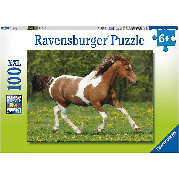 Пазл Пегий конь XXL 100 штПазлы до 100 деталей<br>Характеристики:<br><br>• тип игрушки: пазл;<br>• комплектация: 100 эл.;<br>• бренд: Ravensburger;<br>• упаковка: картон;<br>• размер: 34х4х23 см;<br>• вес: 571 гр;<br>• возраст: от 6 лет;<br>• материал: картон.<br><br>Пазл «Пегий конь» XXL 100 шт представляет из себя увлекательную игру для детей от шести лет. Набор состоит из 100 деталей, выполненных из высококачественного картона. Из них предлагается собрать изображение лошади. Головоломки Ravensburger всегда отличаются высоким качеством полиграфии, изготовлены из экологичного сырья.   Рисунок имеет матовую поверхность без бликов, напечатан на ламинированной бумаге. <br><br>Пазл сделан из плотного картона, с нанесением яркого красочного рисунка и аккуратной вырубкой деталей с четкими гладкими краями, которые позволяют легко состыковывать элементы пазла между собой. Сборка данного пазла сможет увлечь детей и поспособствовать развитию логического мышления и усидчивости.  Они также развивают образное мышление, наблюдательность и внимательность, а также мелкую моторику и координацию движений рук.<br><br>Пазл «Пегий конь» XXL 100 шт можно купить в нашем интернет-магазине.<br>Ширина мм: 340; Глубина мм: 40; Высота мм: 230; Вес г: 571; Возраст от месяцев: -2147483648; Возраст до месяцев: 2147483647; Пол: Унисекс; Возраст: Детский; SKU: 7376882;