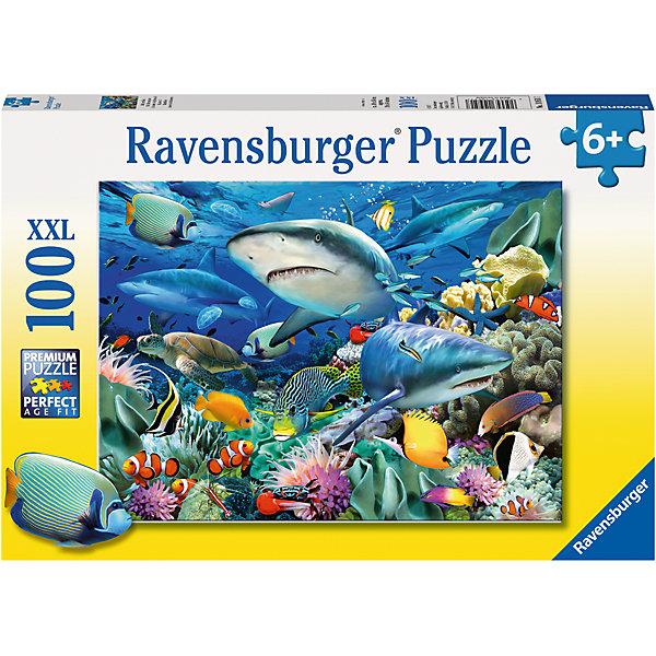 Пазл Акулы XXL 100 штПазлы до 100 деталей<br>Характеристики:<br><br>• тип игрушки: пазл;<br>• комплектация: 100 эл.;<br>• бренд: Ravensburger;<br>• упаковка: картон;<br>• размер: 34х4х23 см;<br>• вес: 571 гр;<br>• возраст: от 6 лет;<br>• материал: картон.<br><br>Пазл «Акулы» XXL 100 шт представляет из себя увлекательную игру для детей от шести лет. Набор состоит из 100 деталей, выполненных из высококачественного картона. Из них предлагается собрать изображение подводного мира со множеством морских обитателей. Головоломки Ravensburger всегда отличаются высоким качеством полиграфии, изготовлены из экологичного сырья.   Рисунок имеет матовую поверхность без бликов, напечатан на ламинированной бумаге. <br><br>Пазл сделан из плотного картона, с нанесением яркого красочного рисунка и аккуратной вырубкой деталей с четкими гладкими краями, которые позволяют легко состыковывать элементы пазла между собой. Сборка данного пазла сможет увлечь детей и поспособствовать развитию логического мышления и усидчивости.  Они также развивают образное мышление, наблюдательность и внимательность, а также мелкую моторику и координацию движений рук.<br><br>Пазл «Акулы» XXL 100 шт можно купить в нашем интернет-магазине.<br>Ширина мм: 340; Глубина мм: 40; Высота мм: 230; Вес г: 571; Возраст от месяцев: -2147483648; Возраст до месяцев: 2147483647; Пол: Унисекс; Возраст: Детский; SKU: 7376889;