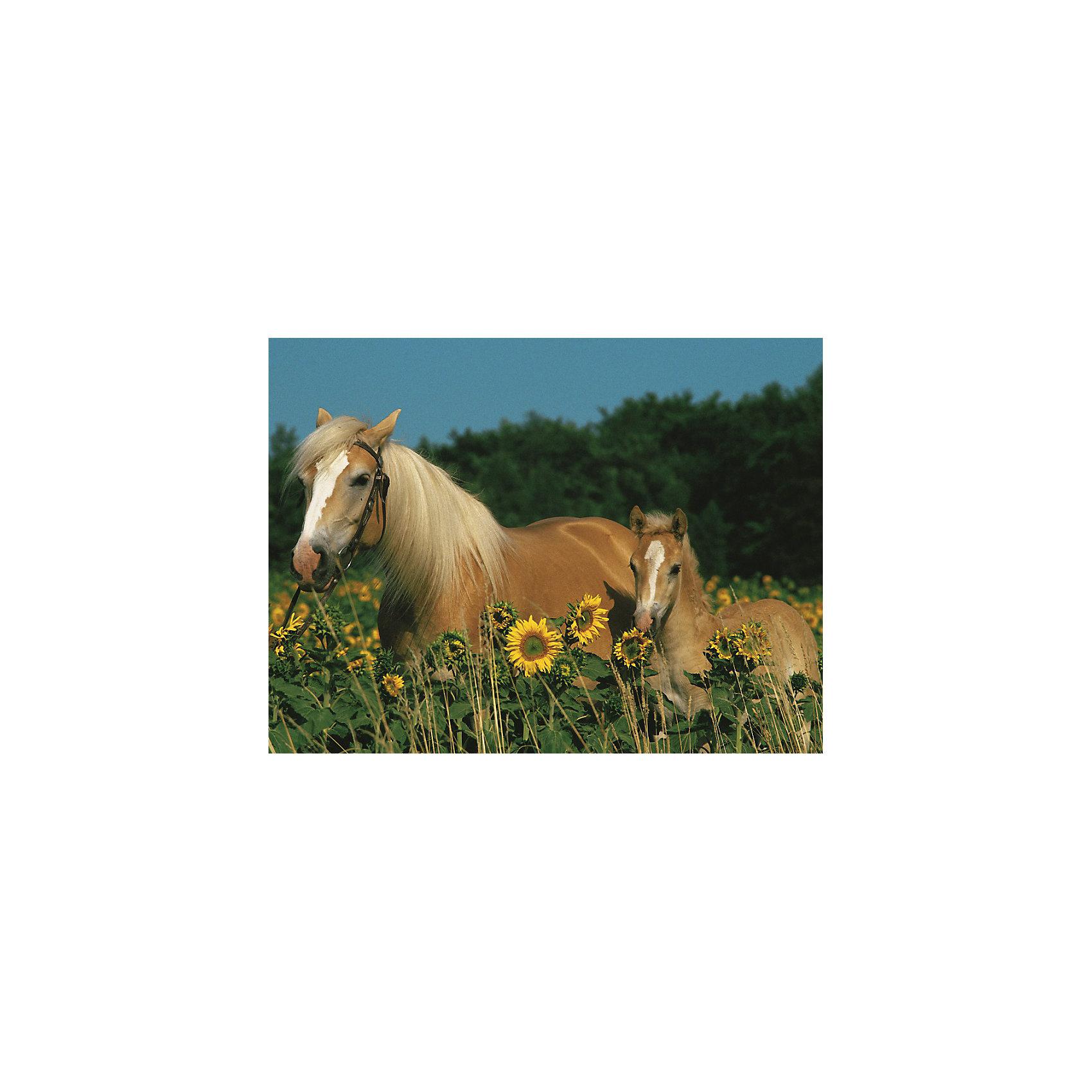 Пазл «Лошади в подсолнухах» XXL 200 шт от myToys