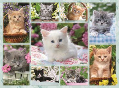 Ravensburger Пазл «Галерея котят» 500 шт