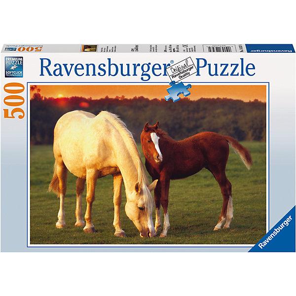 Пазл «Красивые лошади» 500 штПазлы до 500 деталей<br>Характеристики:<br><br>• тип игрушки: пазл;<br>• комплектация: 500 эл;<br>• бренд: Ravensburger;<br>• упаковка: картон;<br>• размер: 34х4х23 см;<br>• вес: 587 гр;<br>• возраст: от 6 лет;<br>• материал: картон.<br><br>Пазл «Красивые лошади» 500 элементов представляет из себя увлекательную игру для детей от шести лет. Набор состоит из 500 деталей, выполненных из высококачественного картона. Из них предлагается собрать изображение двух мирно пасущихся на лугу лошадей. Одна из них, кремового цвета, вторая – бурого с белым пятнышком на лбу. Такой тандем станет настоящим украшением дома и будет повышать настроение при одном взгляде на него.     <br>Головоломки Ravensburger всегда отличаются высоким качеством полиграфии, изготовлены из экологичного сырья. Собранный пазл будет иметь матовую поверхность без бликов, потому как напечатан на качественной ламинированной бумаге. Пазл сделан из плотного картона, с нанесением красочного рисунка и аккуратной вырубкой деталей с четкими гладкими краями, которые позволяют легко состыковывать элементы пазла между собой. Сборка данного пазла сможет увлечь детей и поспособствовать развитию логического мышления и усидчивости.  Они также развивают образное мышление, наблюдательность и внимательность, а также мелкую моторику и координацию движений рук.<br>Пазл «Красивые лошади» 500 элементов можно купить в нашем интернет-магазине.<br>Ширина мм: 340; Глубина мм: 40; Высота мм: 230; Вес г: 587; Возраст от месяцев: -2147483648; Возраст до месяцев: 2147483647; Пол: Унисекс; Возраст: Детский; SKU: 7376983;