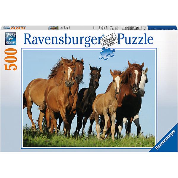 Пазл «Табун лошадей» 500 штПазлы классические<br>Характеристики:<br><br>• тип игрушки: пазл;<br>• комплектация: 500 эл;<br>• бренд: Ravensburger;<br>• упаковка: картон;<br>• размер: 34х4х23 см;<br>• вес: 587 гр;<br>• возраст: от 6 лет;<br>• материал: картон.<br><br>Пазл «Табун лошадей» 500 элементов представляет из себя увлекательную игру для детей от шести лет. Набор состоит из 500 деталей, выполненных из высококачественного картона. Из них предлагается собрать изображение пяти взрослых лошадей и одного милого жеребенка. Все они бегут по полю. Лошади бурого цвета и у всех есть отличительное белое пятнышко. <br>Головоломки Ravensburger всегда отличаются высоким качеством полиграфии, изготовлены из экологичного сырья. Собранный пазл будет иметь матовую поверхность без бликов, потому как напечатан на качественной ламинированной бумаге. Пазл сделан из плотного картона, с нанесением красочного рисунка и аккуратной вырубкой деталей с четкими гладкими краями, которые позволяют легко состыковывать элементы пазла между собой. Сборка данного пазла сможет увлечь детей и поспособствовать развитию логического мышления и усидчивости.  Они также развивают образное мышление, наблюдательность и внимательность, а также мелкую моторику и координацию движений рук.<br>Пазл «Табун лошадей» 500 элементов можно купить в нашем интернет-магазине.<br>Ширина мм: 340; Глубина мм: 40; Высота мм: 230; Вес г: 587; Возраст от месяцев: -2147483648; Возраст до месяцев: 2147483647; Пол: Унисекс; Возраст: Детский; SKU: 7376999;