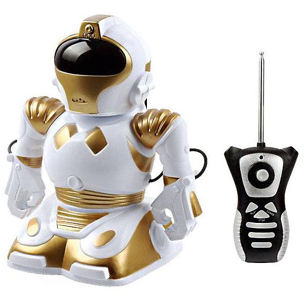 Радиоуправляемый робот Mioshi RobokidРоботы<br>Характеристики:<br><br>• возраст: от 3 лет;<br>• материал: пластик;<br>• в комплекте: робот, пульт управления;<br>• тип батареек: 4хАА;<br>• наличие батареек: нет в комплекте;<br>• вес упаковки: 440 гр.;<br>• функции: двигается, вращается, танцует, запись звука, световые эффекты;<br>• высота игрушки: 22 см;<br>• размер упаковки: 21,5х15,5х22 см;<br>• страна производитель: Китай.<br><br>Robokit от Mioshi напоминает путешественника который прибыл на Землю прямиком из космоса. Кроме привычных для роботов функций (движение, вращение, танец), эта модель умеет еще записывать и воспроизводить звук до 6 секунд. Удобный пульт поможет раскрыть все таланты робота. Интересный внешний вид игрушки и ее способности создадут не один увлекательный сюжет для игр, стимулируя развитие фантазии ребенка.<br><br>Робота р/у Robokid можно купить в нашем интернет-магазине.<br>Ширина мм: 215; Глубина мм: 155; Высота мм: 220; Вес г: 440; Возраст от месяцев: 36; Возраст до месяцев: 72; Пол: Мужской; Возраст: Детский; SKU: 7377548;