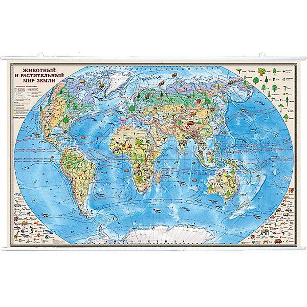 Карта Животный и растительный мир Земли 1:35М на рейкахАтласы и карты<br>Характеристики:<br><br>• возраст: от 3 лет;<br>• материал: ламинированная бумага;<br>• масштаб: 1:35 000 000;<br>• упаковка: картонный тубус;<br>• крепление: рейки, крючки;<br>• размер: 90х58 см;<br>• вес упаковки: 498 гр.;<br>• размер упаковки: 96х5,6х5,6 см;<br>• издательство: DMB;<br>• страна производитель: Россия.<br><br>Карту «Животный и растительный мир Земли» можно рассматривать часами. Вся флора и фауна планеты отражены на красочном изображении мира по месту их обитания. Занятия с картой развивают память и помогают ребенку запомнить разные названия. <br><br>Обозначения интуитивно понятны, а сама карта — отличное украшение для стены в детской комнате. Крепление осуществляется с помощью удобных реек и крючков. Ламинированное покрытие с антибликом бережет изображение от выцветания и порчи. Для удобной переноски предусмотрен твердый тубус из картона.<br><br>Карту «Животный и растительный мир Земли» 1:35М на рейках можно купить в нашем интернет-магазине.<br>Ширина мм: 960; Глубина мм: 56; Высота мм: 56; Вес г: 498; Возраст от месяцев: 36; Возраст до месяцев: 144; Пол: Унисекс; Возраст: Детский; SKU: 7378612;