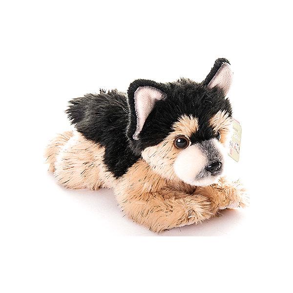 Мягкая игрушка Aurora Щенок немецкой овчарки, 22 смСимвол года<br>Характеристики:<br><br>• возраст: от 3 лет<br>• размер: 22 см.<br>• материал: искусственный мех, синтепон<br><br>Мягкая игрушка от компании Аврора выглядит как настоящий щенок немецкой овчарки. У собачки темная спинка и верхняя часть головы и более светлый животик с лапками, стоячие ушки и маленький хвостик.<br><br>Игрушечный щенок сможет стать лучшим другом ребенку, а так же отличным подарком на любое торжество.<br><br>Игрушка изготовлена из экологически чистых материалов: высококачественного искусственного меха и гипoаллергенного синтепона. Не деформируется и не теряет внешний вид при машинной стирке.<br><br>Игрушку мягкую AURORA, Немецкая Овчарка щенок 22 см можно купить в нашем интернет-магазине.<br><br>Ширина мм: 70<br>Глубина мм: 130<br>Высота мм: 90<br>Вес г: 174<br>Возраст от месяцев: 36<br>Возраст до месяцев: 2147483647<br>Пол: Унисекс<br>Возраст: Детский<br>SKU: 7379672