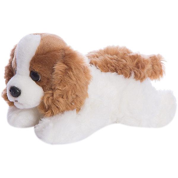 Мягкая игрушка Aurora Щенок королевского кокер-спаниеля, 22 смСимвол 2018 года: Собака<br>Характеристики:<br><br>• возраст: от 3 лет<br>• размер: 22 см.<br>• материал: искусственный мех, синтепон<br><br>Мягкая игрушка от компании Аврора выглядит как настоящий королевский кокер-спаниель. У собачки рыжевато-коричневая шёрстка сверху и светлая снизу. Шерстка кокер-спаниеля мягкая и шелковистая.<br><br>Игрушечный кокер-спаниель сможет стать лучшим другом ребенку, а так же отличным подарком на любое торжество.<br><br>Игрушка изготовлена из экологически чистых материалов: высококачественного искусственного меха и гипoаллергенного синтепона. Не деформируется и не теряет внешний вид при машинной стирке.<br><br>Игрушку мягкую AURORA, Королевский Кокер-спаниель щенок 22 см можно купить в нашем интернет-магазине.<br>Ширина мм: 70; Глубина мм: 150; Высота мм: 100; Вес г: 176; Возраст от месяцев: 36; Возраст до месяцев: 2147483647; Пол: Унисекс; Возраст: Детский; SKU: 7379673;