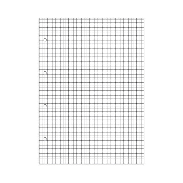 Сменные блоки для тетрадей на кольцах А5, 80л.Бумажная продукция<br>Характеристики:<br><br>• сменный блок: 1 шт.;<br>• формат: А5;<br>• цвет: белый;<br>• количество листов: 80;<br>• плотность бумаги: 70 гр./кв.м.;<br>• страницы: в клетку, без полей.<br><br>Запасной блок для тетради на кольцах от компании «Альт» содержит плотные белоснежные листы высокого качества. За счет хорошей плотности бумаги отверстия для колец надежно удерживают лист на металлической основе. Поверхность отлично впитывает чернила, не выделяет их с обратной стороны.<br><br>Сменные блоки для тетрадей на кольцах А5, 80л. можно купить в нашем интернет-магазине.<br>Ширина мм: 210; Глубина мм: 146; Высота мм: 5; Вес г: 163; Возраст от месяцев: 60; Возраст до месяцев: 2147483647; Пол: Унисекс; Возраст: Детский; SKU: 7380052;