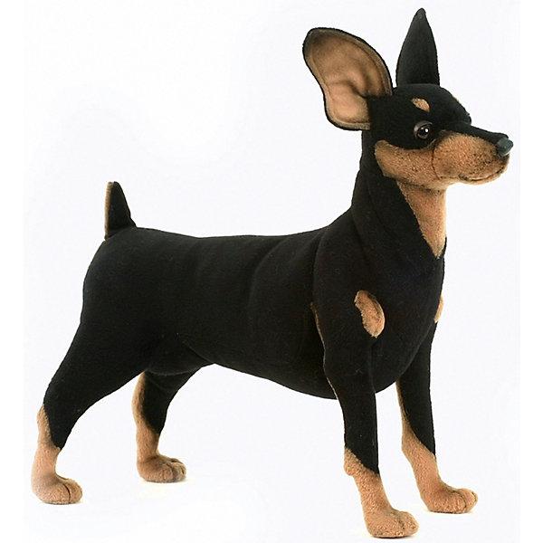 Мягкая игрушка Hansa Собака породы цвергпинчер, 43 смСимвол 2018 года: Собака<br>Характеристики товара:<br><br>• возраст: от 3 лет;<br>• цвет: черно-коричневый;<br>• высота игрушки: 43 см.;<br>• состав: искусственный мех, текстиль, металл, пластик, наполнитель;<br>• упаковка: картонная коробка;<br>• вес в упаковке: 430 гр.;<br>• бренд, страна: Hansa, Филлипины;<br>• страна-производитель: Филлипины.<br><br>Мягкая игрушка «Собака породы Цвергпинчер» от торговой марки Hansa из серии «Домашние и сельскохозяйственные животные» не только послужит ребенку отличной забавой, украсит интерьер дома, но и пополнит полку коллекционера. Она придает комнате атмосферу уюта и тепла. <br><br>Фигурка выглядит очень реалистично и полностью учитывает анатомические особенности настоящего животного, а также окрас. Черный с рыжими пятнами и носочками на передних и задних лапах. Детально проработана рыжая маска на морде и грудной клетке, а также выражение глаз. Игрушка сделана вручную. Основным ее материалом является искусственный мех. Аккуратно простроченные швы надежно удерживают внутреннюю набивку. <br><br>Мягкие игрушки Филлипинского бренда Hansa — это красивые декоративные товары, выполненный в ручную,  отличающиеся высоким качеством и разнообразием, среди которых можно будет подобрать зверюшку в подарок не только детям, но и взрослым.<br><br>Мягкую игрушку «Собака породы Цвергпинчер», стоячий, 43 см., Hansa можно купить в нашем интернет-магазине.<br>Ширина мм: 130; Глубина мм: 430; Высота мм: 350; Вес г: 435; Возраст от месяцев: 36; Возраст до месяцев: 2147483647; Пол: Унисекс; Возраст: Детский; SKU: 7453662;