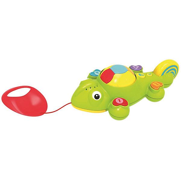 Интерактивная игрушка 1Toy Kidz Delight Каталка хамелеонИнтерактивные игрушки для малышей<br>Характеристики товара:<br><br>• возраст: от 1 года;<br>• размер упаковки: 18х12х28 см.;<br>• игрушка на батарейках, которые входят в комплект;<br>• состав: пластик;<br>• упаковка: картонная коробка открытого типа;<br>• вес в упаковке: 503 гр.;<br>• бренд, страна: 1 TOY, Россия;<br>• страна-производитель: Китай.<br><br>Игрушка-каталка обучающая «Интерактивный Хамелеон» - развивающая игрушка от бренда 1 TOY привлечет внимание мальчиков и девочек не только своими ярким оформлением, но и звуковыми эффектами. <br><br>На спинке у забавного хамелеона имеется шар, который при движении игрушки вращается, демонстрируя разные цвета, и звучит музыка. На его лапках расположены кнопочки с цифрами, формами и цветами.<br><br>Малыш может также крутить колесо на хвосте, улучшая мелкую моторику пальцев. Игры детей помогут разнообразить 2 активных режима: узнавайка и викторина. У каталки удобная ручка. Работает игрушка от батареек, которые входят в комплект.<br><br>Обучающие игрушки от бренда 1 TOY  нацелены на развитие мелкой моторики, образного мышления, усидчивости, любознательности и других полезных навыков.<br><br>Игрушку-каталку обучающую «Интерактивный Хамелеон» (звук) от 1 TOY  можно купить в нашем интернет-магазине.<br>Ширина мм: 180; Глубина мм: 280; Высота мм: 120; Вес г: 503; Возраст от месяцев: 12; Возраст до месяцев: 2147483647; Пол: Унисекс; Возраст: Детский; SKU: 7464018;