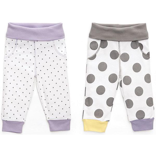 Трикотажные брюки: 2 шт. Happy Baby для девочкиПолзунки и штанишки<br>Характеристики товара:<br><br>• цвет: белый/серый/сиреневый;<br>• состав ткани: 100% хлопок;<br>• сезон: круглый год;<br>• в комплекте; 2 шт. штанишек;<br>• высокий мягкий поясок;<br>• мягкие манжеты;<br>• удобная посадка по поясу и бедрам;<br>• коллекция: Newborn Fashion Collection;<br>• страна бренда: Россия;<br>• страна изготовитель: Китай.<br><br>Стильные джоггеры из коллекции предназначены для малышей с самого рождения и соответствуют требованиям родителей в отношении функциональности, высокого качества материалов и оптимального кроя! Эластичные манжеты и высокий поясок мягко фиксируют штанишки на ребенке и не доставляют ему лишних беспокойств, что очень удобно при коликах, т.к. поясок не будет пережимать мягкий нежный животик. <br><br>Натуральная, очень эластичная и мягкая ткань создана из длинноволокнистого, гипоаллергенного хлопка, отлично выводит лишнюю влагу с поверхности тела, не вызывает аллергию или раздражение на коже малыша. Специально разработанное лекало обеспечивает правильную комфортную посадку по поясу и бедрам ребенка, а воздушная цветовая гамма и принты со звёздами создают удивительно нежное и гармоничное сочетание.<br><br>Трикотажные брюки 2 шт. Happy Baby (Хеппи Беби) можно купить в нашем интернет-магазине.<br>Ширина мм: 157; Глубина мм: 13; Высота мм: 119; Вес г: 200; Цвет: белый/серый; Возраст от месяцев: 12; Возраст до месяцев: 15; Пол: Женский; Возраст: Детский; Размер: 80,62,68,56,74; SKU: 7468312;
