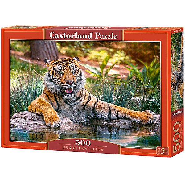 Купить Пазл Castorland Тигр 500 деталей, Польша, Унисекс