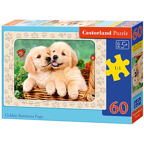 Пазл Castorland Щенки ретривера 60 деталей MIDIПазлы для малышей<br>Характеристики товара:<br><br>• возраст: от 3 лет;<br>• количество деталей: 60 шт;<br>• материал: картон;<br>• размер упаковки: 17,5х13х3,7 см;<br>• размер картины: 32х23 см;<br>• вес упаковки: 150 гр.;<br>• страна производитель: Польша.<br><br>Пазл Castorland (Касторлэнд) Щенки ретривера – это отличный способ увлекательно провести досуг, снять стресс и развить моторику.<br><br>Качество этих пазлов подтверждено миллионами любителей сборки пазлов. Пазлы Castorland собираются легко. Каждая деталь имеет индивидуальную форму и легко соединяется с другой, поэтому у Вас обязательно получится ожидаемый результат - картина собранная собственными руками.<br><br>Пазл Castorland (Касторлэнд) Щенки ретривера можно купить в нашем интернет-магазине.<br>Ширина мм: 180; Глубина мм: 130; Высота мм: 40; Вес г: 150; Возраст от месяцев: 36; Возраст до месяцев: 2147483647; Пол: Унисекс; Возраст: Детский; SKU: 7487363;