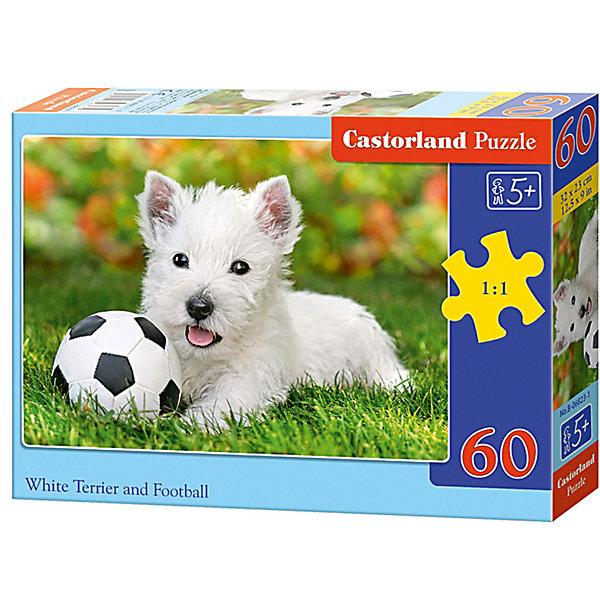 Пазл Castorland Белый щенок с мячом 60 деталей MIDIПазлы для малышей<br>Характеристики товара:<br><br>• возраст: от 3 лет;<br>• количество деталей: 60 шт;<br>• материал: картон;<br>• размер упаковки: 17,5х13х3,7 см;<br>• размер картины: 32х23 см;<br>• вес упаковки: 150 гр.;<br>• страна производитель: Польша.<br><br>Пазл Castorland (Касторлэнд) Белый щенок с мячом – это отличный способ увлекательно провести досуг, снять стресс и развить моторику.<br><br>Качество этих пазлов подтверждено миллионами любителей сборки пазлов. Пазлы Castorland собираются легко. Каждая деталь имеет индивидуальную форму и легко соединяется с другой, поэтому у Вас обязательно получится ожидаемый результат - картина собранная собственными руками.<br><br>Пазл Castorland (Касторлэнд) Белый щенок с мячом можно купить в нашем интернет-магазине.<br>Ширина мм: 180; Глубина мм: 130; Высота мм: 40; Вес г: 150; Возраст от месяцев: 36; Возраст до месяцев: 2147483647; Пол: Унисекс; Возраст: Детский; SKU: 7487367;
