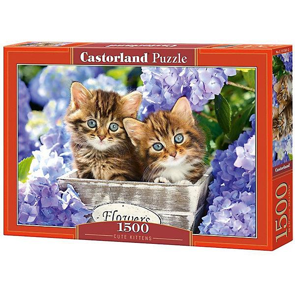 Пазл Castorland Два котенка 1500 деталейПазлы классические<br>Характеристики товара:<br><br>• возраст: от 9 лет;<br>• количество деталей: 1500 шт;<br>• материал: картон;<br>• размер упаковки: 35х25х5,2 см;<br>• размер картины: 68х47 см;<br>• вес упаковки: 600 гр.;<br>• страна производитель: Польша.<br><br>Пазл Castorland (Касторлэнд) Два котенка – это отличный способ увлекательно провести досуг, снять стресс и развить моторику.<br><br>Качество этих пазлов подтверждено миллионами любителей сборки пазлов. Пазлы Castorland собираются легко. Каждая деталь имеет индивидуальную форму и легко соединяется с другой, поэтому у Вас обязательно получится ожидаемый результат - картина собранная собственными руками.<br><br>Пазл Castorland (Касторлэнд) Два котенка можно купить в нашем интернет-магазине.<br>Ширина мм: 350; Глубина мм: 250; Высота мм: 50; Вес г: 600; Возраст от месяцев: 144; Возраст до месяцев: 2147483647; Пол: Унисекс; Возраст: Детский; SKU: 7590977;
