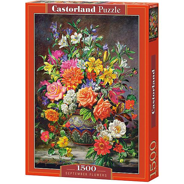 Пазл Castorland Сентябрьские цветы 1500 деталейПазлы классические<br>Характеристики товара:<br><br>• возраст: от 9 лет;<br>• количество деталей: 1500 шт;<br>• материал: картон;<br>• размер упаковки: 35х25х5,2 см;<br>• размер картины: 68х47 см;<br>• вес упаковки: 600 гр.;<br>• страна производитель: Польша.<br><br>Пазл Castorland (Касторлэнд) Сентябрьские цветы – это отличный способ увлекательно провести досуг, снять стресс и развить моторику.<br><br>Качество этих пазлов подтверждено миллионами любителей сборки пазлов. Пазлы Castorland собираются легко. Каждая деталь имеет индивидуальную форму и легко соединяется с другой, поэтому у Вас обязательно получится ожидаемый результат - картина собранная собственными руками.<br><br>Пазл Castorland (Касторлэнд) Сентябрьские цветы можно купить в нашем интернет-магазине.<br>Ширина мм: 350; Глубина мм: 250; Высота мм: 50; Вес г: 600; Возраст от месяцев: 144; Возраст до месяцев: 2147483647; Пол: Унисекс; Возраст: Детский; SKU: 7590983;