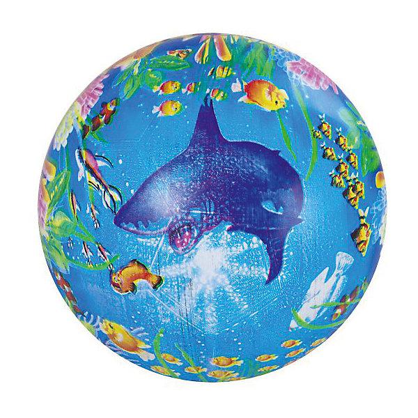 Детский мяч Shantou Gepai Подводный мир, 22 смМячи детские<br>Характеристики:<br><br>• тип игрушки: мяч;<br>• возраст: от 3 лет;<br>• материал: резина;<br>• цвет: мультколор;<br>• диаметр: 22 см;<br>• бренд: Shantou Gepai;<br><br>Детский мяч Shantou Gepai «Подводный мир», 22 см станет незаменимым атрибутом для подвижных игр. Этот красивый, красочно оформленный мяч сделан из резины, поэтому он очень далеко отскакивает. На его поверхности изображена картинка на тематику подводного царства. Этот мяч отлично подходит и для водных развлечений. Подвижные игры развлекают детей, а также сближают взрослых людей и поднимают им настроение.<br><br>Детский мяч Shantou Gepai «Подводный мир», 22 см можно купить в нашем интернет-магазине.<br>Ширина мм: 200; Глубина мм: 20; Высота мм: 110; Вес г: 7; Возраст от месяцев: 36; Возраст до месяцев: 2147483647; Пол: Унисекс; Возраст: Детский; SKU: 7684040;