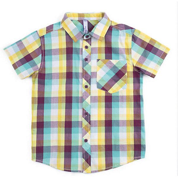 Рубашка PlayToday для мальчикаБлузки и рубашки<br>Сорочка PlayToday для мальчика<br>Сорочка с коротким рукавом классического кроя, выполнена из натурального материала. Модель дополнена накладным карманом.<br>Состав:<br>100% хлопок<br>Ширина мм: 174; Глубина мм: 10; Высота мм: 169; Вес г: 157; Цвет: белый; Возраст от месяцев: 132; Возраст до месяцев: 144; Пол: Мужской; Возраст: Детский; Размер: 146/152,134/140,122,116,110,128,104; SKU: 7715145;
