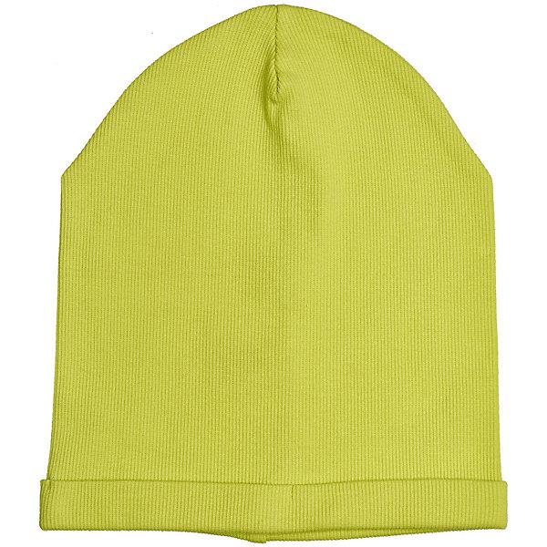 Шапка Button Blue для девочкиГоловные уборы<br>Характеристики товара:<br><br>• цвет: зеленый<br>• состав ткани: 95% хлопок, 5% эластан<br>• сезон: демисезон<br>• страна бренда: Россия<br><br>Яркая шапка для детей выполнена из мягкой эластичной ткани. Хлопковая шапка для ребенка от известного бренда Button Blue поможет защитить голову от прохладного воздуха. Эта детская шапка, как и другие модели одежды для ребенка от Button Blue - качественная стильная вещь по доступной цене. <br><br>Шапку Button Blue (Баттон Блю) для девочки можно купить в нашем интернет-магазине.<br>Ширина мм: 89; Глубина мм: 117; Высота мм: 44; Вес г: 155; Цвет: зеленый; Возраст от месяцев: 24; Возраст до месяцев: 36; Пол: Женский; Возраст: Детский; Размер: 50,56,54,52; SKU: 7745898;