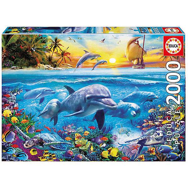 Пазл Educa 2000 деталей  Семья дельфиновПазлы классические<br>Характеристики товара:<br><br>• возраст: от 9 лет;<br>• количество деталей: 2000 шт;<br>• материал: картон;<br>• в комплекте: сухой клей;<br>• размер упаковки: 30х43х6 см;<br>• размер картины: 96х68 см;<br>• вес упаковки: 1400 гр.;<br>• страна бренда: Испания.<br><br>Пазл Educa Семья дельфинов – это отличный способ увлекательно провести досуг, снять стресс и развить моторику.<br><br>Качество этих пазлов подтверждено миллионами любителей сборки пазлов. Каждая деталь имеет индивидуальную форму и легко соединяется с другой, поэтому у Вас обязательно получится ожидаемый результат.<br><br>Компания Educa предоставляет уникальный постпродажный сервис - бесплатная доставка в любую точку мира потерянной детали.<br><br>Пазл Educa Семья дельфинов можно купить в нашем интернет-магазине.<br>Ширина мм: 427; Глубина мм: 55; Высота мм: 298; Вес г: 1350; Возраст от месяцев: 36; Возраст до месяцев: 1188; Пол: Унисекс; Возраст: Детский; SKU: 7753433;