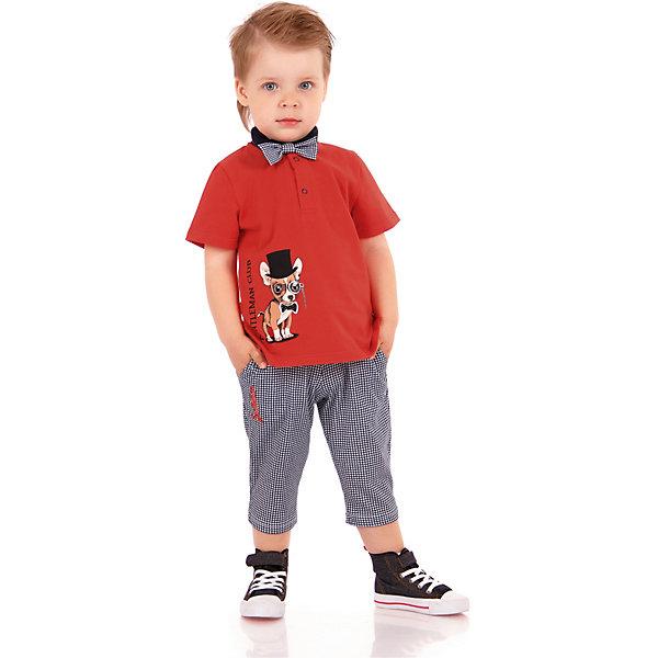 Футболка АпрельФутболки, поло и топы<br>Характеристики товара:<br><br>• цвет: красный<br>• состав ткани: 100% хлопок<br>• сезон: лето<br>• застегивается на кнопки<br>• короткие рукава<br>• с рисунком<br>• страна бренда: Россия<br><br>Стильная футболка-поло для ребенка от популярного бренда Апрель декорирована оригинальным принтом. Материал этой детской футболки - чистый натуральный хлопок, который позволит создать комфортные условия для тела. Такая футболка для детей смотрится эффектно и стильно.<br><br>Футболку Апрель можно купить в нашем интернет-магазине.<br>Ширина мм: 190; Глубина мм: 74; Высота мм: 229; Вес г: 236; Цвет: красный; Возраст от месяцев: 12; Возраст до месяцев: 18; Пол: Унисекс; Возраст: Детский; Размер: 86,116,110,104,98,92; SKU: 7799694;