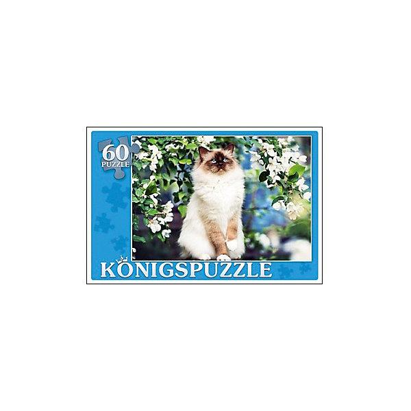 Пазл Konigspuzzle Сиамская кошка 60 элементовПазлы для малышей<br>Характеристики товара:<br><br>• возраст: от 3 лет;<br>• количество деталей: 60 шт;<br>• материал: картон;<br>• размер упаковки: 21х14х4 см;<br>• размер картины: 34х24 см;<br>• вес упаковки: 368 гр.;<br>• страна бренда: Германия.<br><br>Пазл Konigspuzzle Сиамская кошка – это отличный способ увлекательно провести досуг, снять стресс и развить моторику.<br>Каждая деталь имеет индивидуальную форму и легко соединяется с другой, поэтому у Вас обязательно получится ожидаемый результат.<br><br>Пазл Konigspuzzle  Сиамская кошка можно купить в нашем интернет-магазине.<br>Ширина мм: 520; Глубина мм: 220; Высота мм: 150; Вес г: 2900; Возраст от месяцев: 36; Возраст до месяцев: 2147483647; Пол: Унисекс; Возраст: Детский; SKU: 7910481;