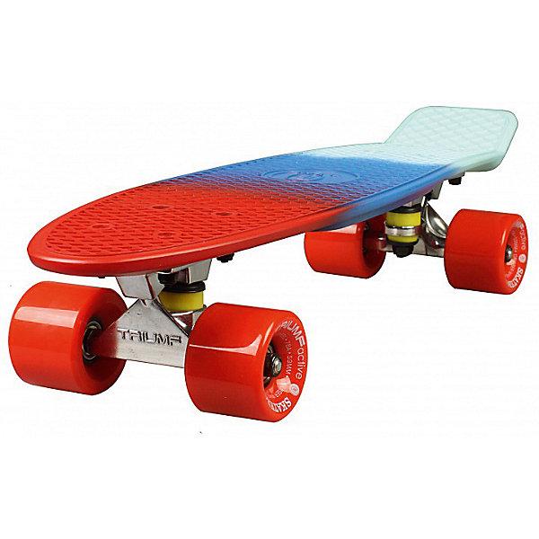 Скейтборд Triumf Active 22 TLS-401M SOUTH WINDСкейтборды и лонгборды<br>Характеристики товара: <br><br>• возраст: от 5 лет;<br>• максимальная нагрузка: 80 кг;<br>• диаметр колес: 60 мм;<br>• материал колес: полиуретан;<br>• жесткость колес: 78А;<br>• размер платформы: 56,5х15 см;<br>• материал платформы: пластик;<br>• подшипник АВЕС 7;<br>• размер упаковки: 57х13х10 см;<br>• вес упаковки: 1,9 кг.<br><br>Скейтборд Triumf Active 22 TLS-401M South Wind — популярное средство передвижения по городу, подойдет как для детей и подростков, так и взрослых. Колеса выполнены из полиуретана, они обеспечивают ровное катание и хорошее сцепление  поверхностью, не гремят по асфальту и не скользят на влажном покрытии.<br><br>Подшипники обеспечивают хороший накат и высокую скорость. Платформа выполнена из прочного пластика. Поверхность деки рифленая, она препятствует соскальзыванию ног во время езды. <br><br>Скейтборд Triumf Active 22 TLS-401M South Wind можно приобрести в нашем интернет-магазине.<br>Ширина мм: 570; Глубина мм: 130; Высота мм: 100; Вес г: 1900; Цвет: синий; Возраст от месяцев: 60; Возраст до месяцев: 2147483647; Пол: Унисекс; Возраст: Детский; SKU: 7925449;