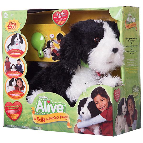 Робот WowWee Собака БеллаИнтерактивные животные<br>Характеристики товара:<br><br>• возраст: от 6 лет;<br>• материал: текстиль;<br>• в комплекте: собака, расческа, ошейник, инструкция;<br>• тип батареек: 4 батарейки С;<br>• наличие батареек: в комплекте;<br>• размер упаковки: 44х47х22 см;<br>• вес упаковки: 1,8 кг.<br><br>Робот-собака Белла Wow Wee — мягкая и пушистая интерактивная собачка, которая ведет себя как самый настоящий щенок. При первом включении она повиляет хвостиком, погавкает, и у нее загорятся глаза. Собака умеет двигаться, шевелить ушками, моргать глазками, вилять хвостиком и издавать до 18 разных звуков. На спинке, лапах и голове у щенка находятся сенсорные датчики, поэтому он будет реагировать на прикосновения и поглаживания.<br><br>Робота-собаку Белла Wow Wee можно приобрести в нашем интернет-магазине.<br>Ширина мм: 440; Глубина мм: 220; Высота мм: 470; Вес г: 1800; Возраст от месяцев: 72; Возраст до месяцев: 168; Пол: Унисекс; Возраст: Детский; SKU: 7925621;