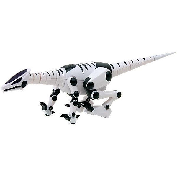 Мини-робот WowWee РептилияРоботы-игрушки<br>Характеристики товара:<br><br>• возраст: от 4 лет;<br>• материал: пластик;<br>• в комплекте: робот, пульт, инструкция;<br>• размер упаковки: 39х16х13 см;<br>• вес упаковки: 460 гр.<br><br>Мини робот-рептилия Wow Wee — увлекательная игрушка робот, который управляется при помощи пульта. Робот умеет двигаться, бегать, прыгать, двигать туловищем, поворачивать головой и хвостом. <br><br>При помощи инфракрасного зрения он распознает окружающие предметы, препятствия, определяет направление движения объектов. На хвосте, в пасти и на подбородке находятся сенсорные датчики.<br><br>Всего робот-рептилия работает в 5 разных режимах. В автономном режиме хищника он охотится, рычит, ходит, ищет. Ребенок может управлять самостоятельно роботом при помощи 28 разнообразных функций. В охранном режиме активируются сенсорный и звуковой датчики.<br><br>Мини робота-рептилия Wow Wee можно приобрести в нашем интернет-магазине.<br>Ширина мм: 390; Глубина мм: 130; Высота мм: 160; Вес г: 460; Возраст от месяцев: 48; Возраст до месяцев: 168; Пол: Унисекс; Возраст: Детский; SKU: 7925623;