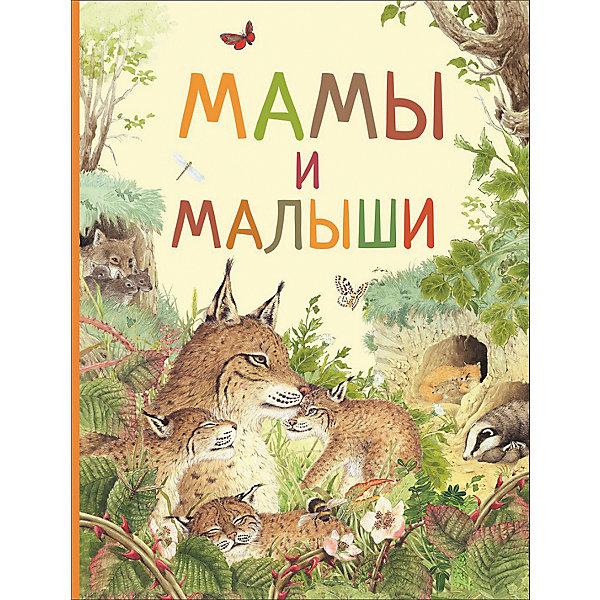 Удивительный мир животных Мамы и малышиЭнциклопедии о животных<br>Характеристики товара:<br><br>• ISBN:9785353087243;<br>• возраст: от 3 лет;<br>• иллюстрации: цветные;<br>• обложка: твердая;<br>• бумага: офсет;<br>• количество страниц: 32 стр.;<br>• формат:28х20х1 см.;<br>• вес: 310 гр.;<br>• автор: Ренне.;<br>• издательство:  Росмэн;<br>• страна: Россия.<br><br>Книга «Мамы и малыши» из серии «Удивительный мир животных» - Эта замечательная книга расскажет о том, как появляются на свет самые разные животные, почему у одних детёныши рождаются готовыми к самостоятельной жизни, а у других — беспомощными и требующими родительской заботы.<br><br>Как это удивительно, что однажды гусеница превратится в прекрасную бабочку, а существо размером с фасолинку станет большим кенгуру! Ребёнок узнает, у каких животных малыши несколько раз меняют внешний вид, прежде чем стать похожими на маму и папу, а у каких детеныши - уменьшенная копия родителей.<br><br>Красочные иллюстрации автора, простые милые сюжеты, уютная атмосфера помогут расширить словарный запас и кругозор, а также привить интерес к чтению. <br><br>Книгу «Мамы и малыши», 32 стр., Изд. Росмэн, можно купить в нашем интернет-магазине.<br>Ширина мм: 283; Глубина мм: 208; Высота мм: 7; Вес г: 310; Возраст от месяцев: 36; Возраст до месяцев: 72; Пол: Унисекс; Возраст: Детский; SKU: 7931656;