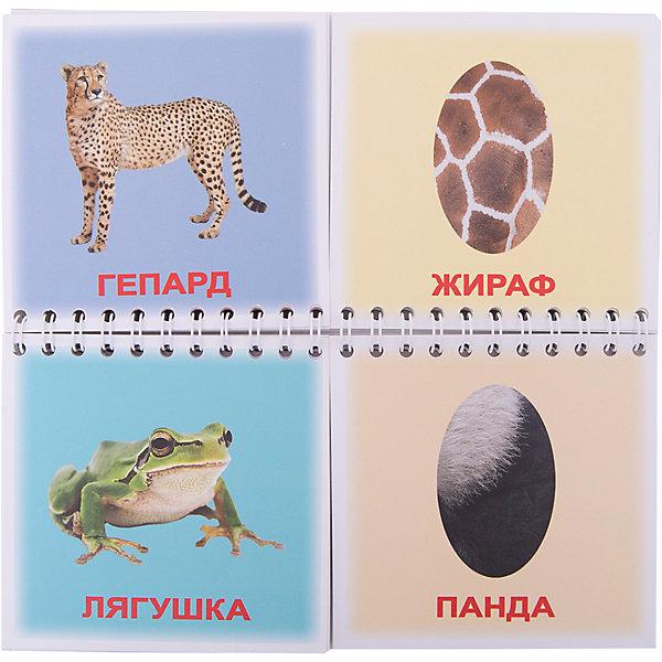 Книга-пазл Кто как одет, Вундеркинд с пелёнокКниги-пазлы<br>Характеристики:<br><br>• возраст: от 1 года<br>• издательство: Вундеркинд с пелёнок<br>• серия: Книги-пазлы<br>• переплет: пружина<br>• количество страниц: 40<br>• иллюстрации: цветные<br>• материал: ламинированный картон<br>• размер: 18х9,5х0,7 см.<br>• вес: 60 гр.<br><br>Книга-пазл «Кто как одет» подарит малышу много положительных эмоций, расширит кругозор, разовьет логическое мышление, память, внимание и мелкую моторику.<br><br>Книга-пазл включает в себя 20 карточек, на которых изображены животное, птица или насекомое и 20 карточек с фрагментами окраса. Задача ребенка к каждому обитателю природы подобрать подходящий фрагмент. В книге представлены: тигр, божья коровка, черепаха, зебра, попугай, гепард, лягушка, слон, змея, далматинец, оса, павлин, улитка, окунь, хамелеон, ёж, панда, крокодил, олень, жираф.<br><br>Страницы книги выполнены из плотного ламинированного картона и скреплены пружиной, благодаря чему, ребенку будет удобно самостоятельно перелистывать странички в поисках правильной комбинации. Названия картинок подписаны крупным шрифтом.<br><br>Книгу-пазл Кто как одет, Вундеркинд с пелёнок можно купить в нашем интернет-магазине.<br>Ширина мм: 180; Глубина мм: 95; Высота мм: 7; Вес г: 70; Цвет: разноцветный; Возраст от месяцев: 12; Возраст до месяцев: 60; Пол: Унисекс; Возраст: Детский; SKU: 7933153;