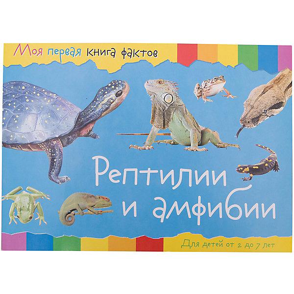 Купить Энциклопедия Моя первая книга фактов Рептилии и амфибии, ND Play, Россия, Унисекс