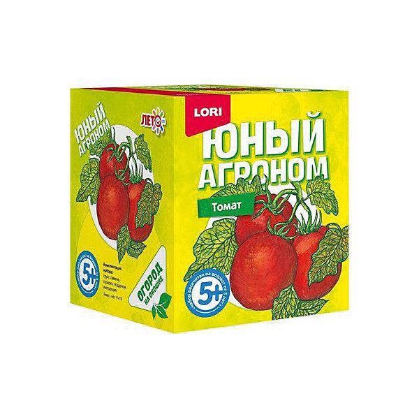 Набор для выращивания Lori Юный агроном ТоматВыращивание растений<br>Характеристики товара:<br><br>• возраст: от 5 лет;<br>• размер упаковки: 8х10х8 см;<br>• вес упаковки: 355 гр.;<br>• страна бренда: Россия.<br><br>Набор для выращивания растений - не только оригинальный подарок, но и яркий способ, воспитать в ребёнке ответственность. Благодаря данному набору ребёнок может наблюдать за ростом и развитием растений и самостоятельно ухаживать за ними.<br><br>Юный агроном Lori Томат можно купить в нашем интернет-магазине.<br>Ширина мм: 118; Глубина мм: 99; Высота мм: 98; Вес г: 355; Цвет: красный/зеленый; Возраст от месяцев: 60; Возраст до месяцев: 2147483647; Пол: Унисекс; Возраст: Детский; SKU: 7985352;