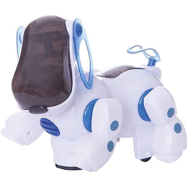 Музыкальная собака Fun ToyРоботы<br>Характеристики:<br><br>• возраст: от 3 лет;<br>• материал: пластик;<br>• тип батареек: 3 x AA  / 2 x AAA .;<br>• наличие батареек: в комплект не входят;<br>• вес: 420 гр;<br>• размер: 24х12х12 см;<br>• страна бренда: Китай;<br>• бренд: Chicco.<br><br>Музыкальная собака Fun Toy - интересный подарок для любого ребенка. Он движется, виляя хвостом как настоящий пес, но выглядит как робот. У него светятся глаза а во время игры он издает лай, играет песенка. Игрушка порадует и мальчиков и девочек. Она выполнена из безопасного для детей пластика и качественных красок.<br><br>Музыкальную собаку Fun Toy можно купить в нашем интернет-магазине.<br>Ширина мм: 240; Глубина мм: 120; Высота мм: 120; Вес г: 420; Возраст от месяцев: 36; Возраст до месяцев: 2147483647; Пол: Унисекс; Возраст: Детский; SKU: 7994455;