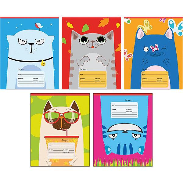 Комплект тетрадей Канц-Эксмо День кота, 10 шт.Бумажная продукция<br>Характеристики:<br><br>• возраст: от 6 лет;<br>• формат: А5;<br>• внутренний блок: 12 листов, линия, с полями;<br>• тип крепления: скрепка;<br>• количество в комплекте: 10 шт;<br>• плотность бумаги: 60 гр/кв.м;<br>• тип обложки: импортный мелованный картон 190 гр/кв.м;<br>• рисунок обложки: мульти;<br>• размер упаковки: 20х16,3х2 см;<br>• вес в упаковке: 390 гр;<br>• страна бренда: Россия.<br><br>Комплект тетрадей Канц-Эксмо «День кота» состоит из 10 тетрадей формата А5. Внутренний блок на скрепках, листы в линию, с полями. Обложки выполнены из мелованного картона.<br><br>Комплект тетрадей Канц-Эксмо «День кота» А5, 10 шт., в линию можно купить в нашем интернет-магазине.<br>Ширина мм: 200; Глубина мм: 163; Высота мм: 20; Вес г: 390; Цвет: разноцветный; Возраст от месяцев: 72; Возраст до месяцев: 2147483647; Пол: Унисекс; Возраст: Детский; SKU: 8334112;
